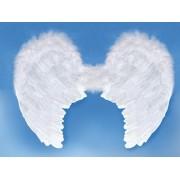 Skrzydła Anioła białe 80x60