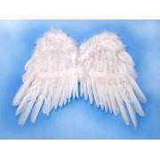 Skrzydła Anioła białe 53x37